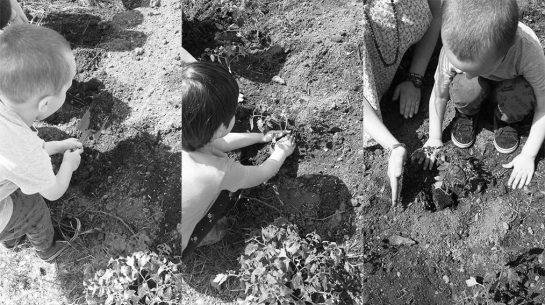 """El contacto con la naturaleza lleva al aprendizaje a través de un huerto escolar, es la premisa de aprender fuera de las aulas de clase con el proyecto """"FuoriClasse"""", desarrollado por la profesora y mediadora cultural Tatiana Cogliati."""
