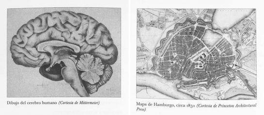 ejemplo de una ciudad inteligente comparado con un cerebro